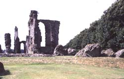Neath Abbey from the east