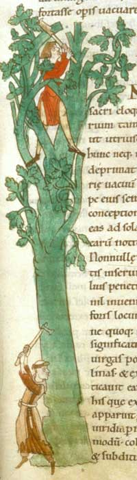 The initial ·Q· from the Moralia in Job depicts a Cistercian monk reaping corn